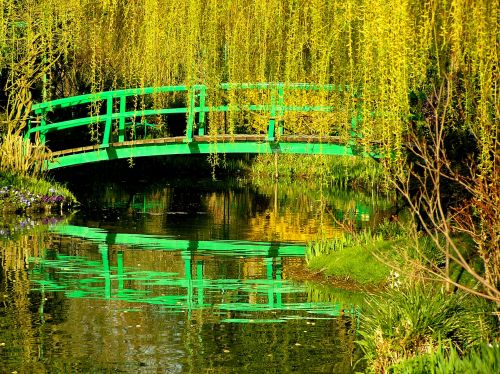 Claude Monet's Garden, Giverny, France. An image of perfect tranquillity if one can catch a few seconds without half a dozen tourists on the iconic bridge. https://witness.theguardian.com/assignment/552e3c5be4b0dfcbad6c3d9f/1477334