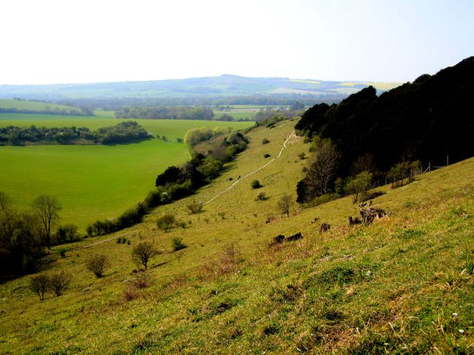 Old Winchester Hill National Nature Reserve. A view down onto the longest walk from the chalk hill in Hampshire England with its not yet fully excavated Iron Age hill fort and a Bronze Age cemetery. https://witness.theguardian.com/assignment/539af314e4b011e8e59e9eb3/1544049