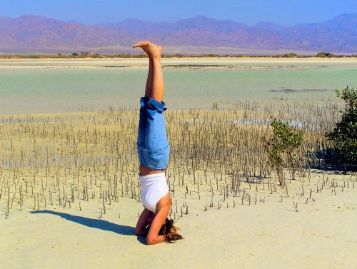 Mangrove Swamp, Sinai Peninsula. Salamba Sirsasana Pose with earth, water, air and space. The fire remains within. https://witness.theguardian.com/assignment/55846d48e4b0629b0a62a4ef/1584957