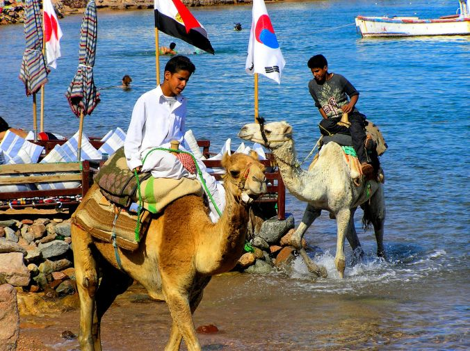A Hot Day In Dahab. A typical day on the beach at Dahab, a small town situated on the southeast coast of the Sinai Peninsula in Egypt. https://witness.theguardian.com/assignment/55afb147e4b0571ff3516306/1652713