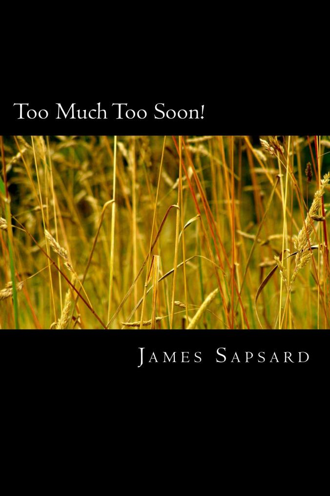 Too_Much_Too_Soon_Cover_for_Kindle